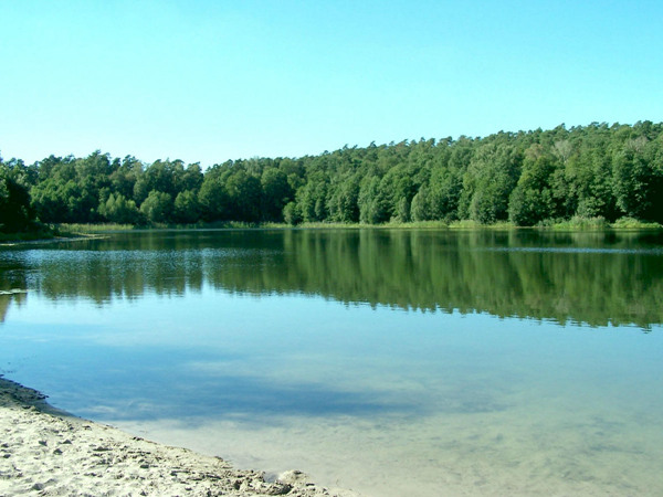 湖光水面(Waters Edge)